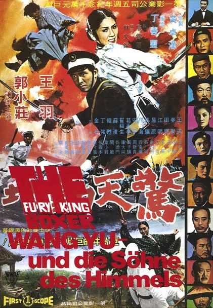 Fury of the King Boxer poster